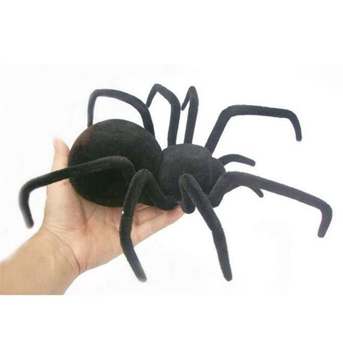 Gifts for 10 Year Old Boys Australia - Radio Controlled Spider