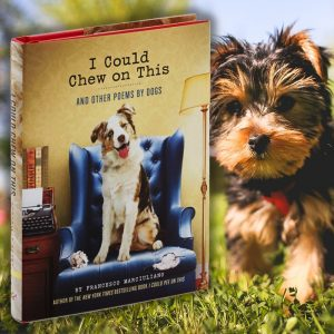 'I Could Chew On This' Dog Poetry Book  - Gifts For Dog Lovers
