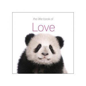 The Little Book Of Love - Gift Ideas For Your Girlfriend