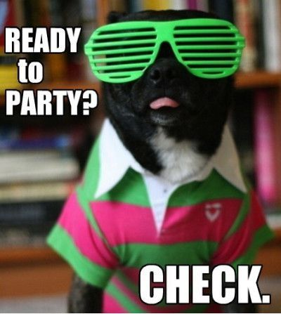 Party Animal Meme