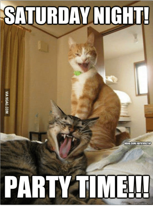 Funny Party Time Meme