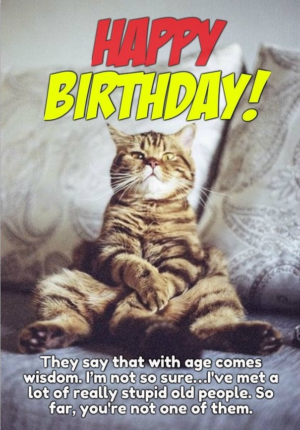 happy birthday funny pictures for women