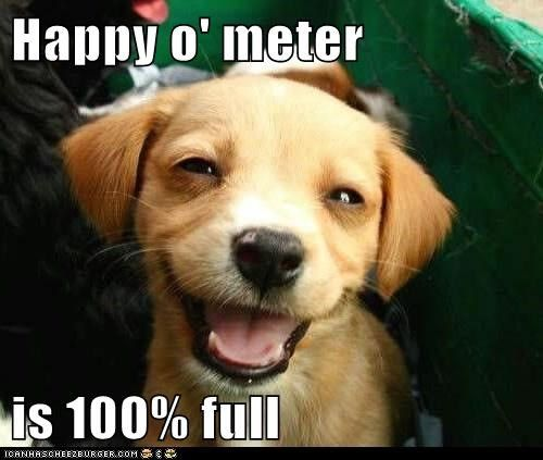 The Best Happy Memes To Make You Smile