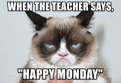 129 Hilarious Grumpy Cat Memes