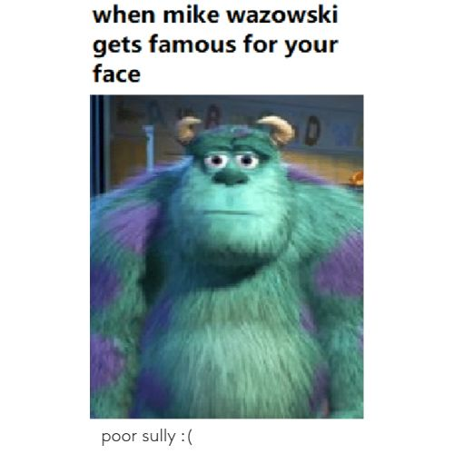 THE 100 BEST MIKE WAZOWSKI MEMES