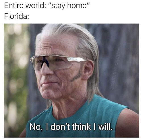 The No Meme | Hilarious No Memes